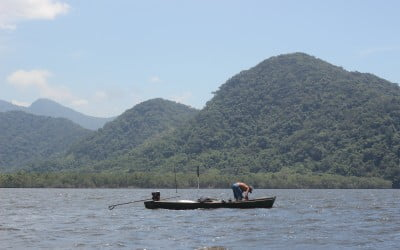 Conheça os sete eixos para uma pesca esportiva responsável